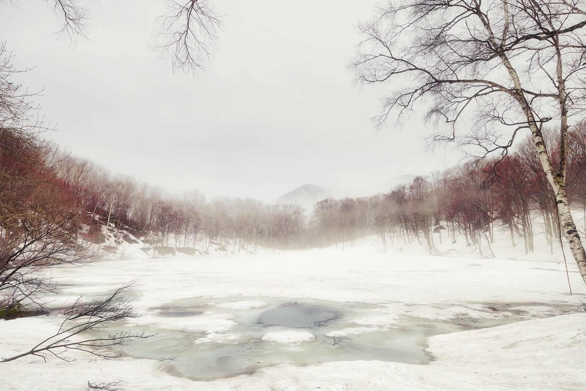 Sasagamine Snowshoe