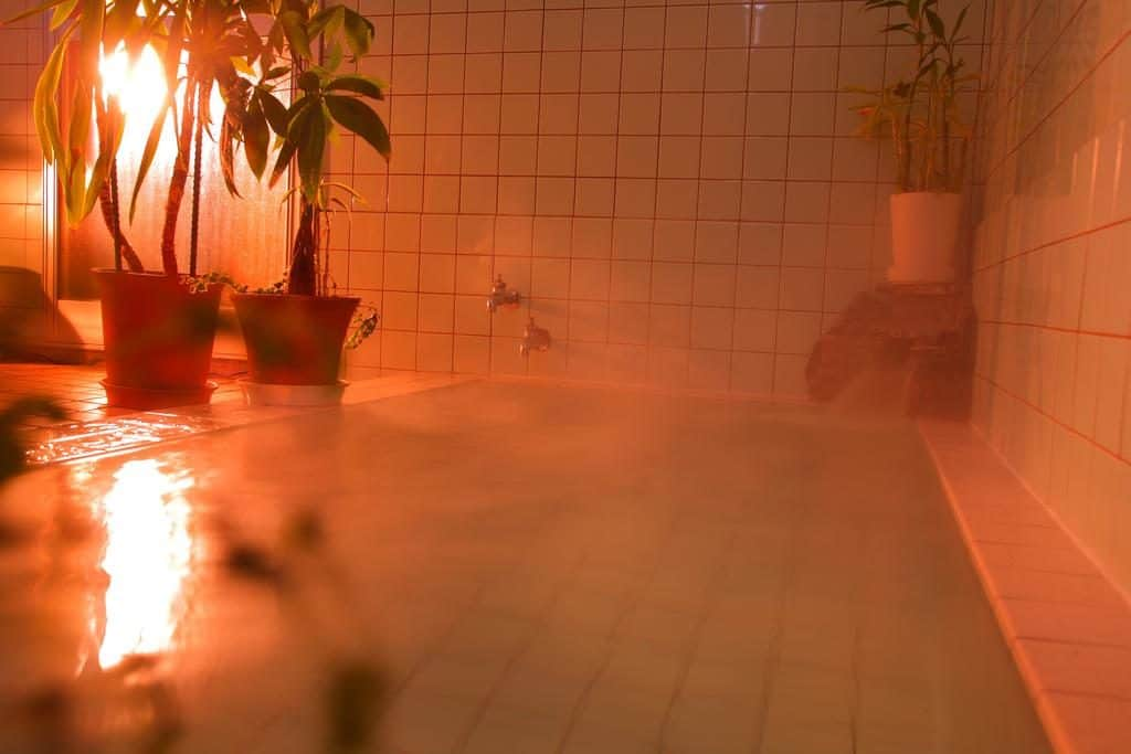 Hotel MOC onsen