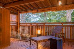 Shin Onsen Hotel