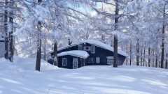 Japan Snowsports